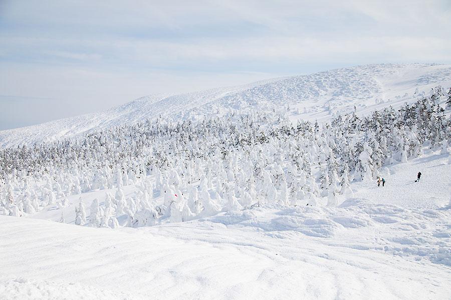 冬の蔵王の風景